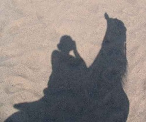 Luke's shadow