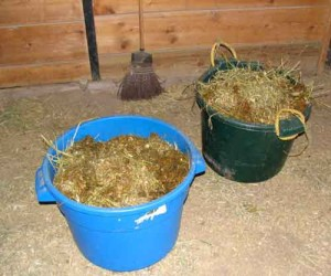 Manure Buckets