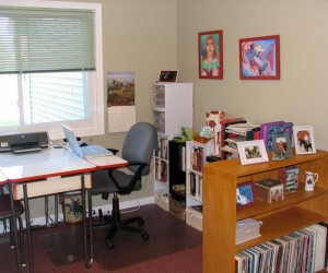 Book Shelves and Cubbies