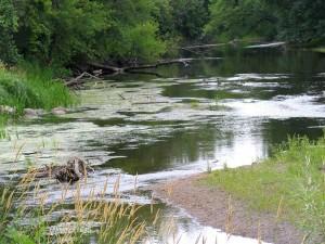 Low River