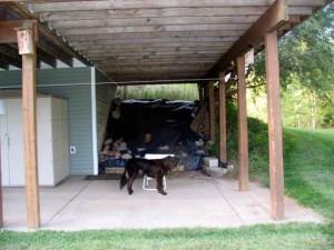 dog kennel spot