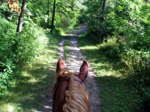 Crow Hassan trail ride