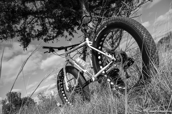 Cooker Fat Tire Bike