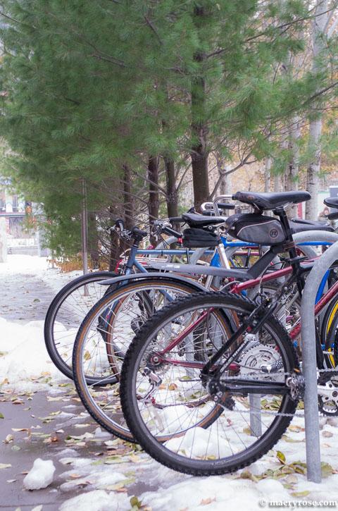 bikes in U of M bike rack