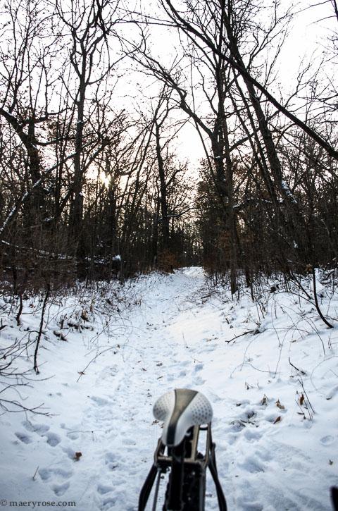 biking through woods