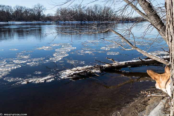 Winter view of Mississippi River