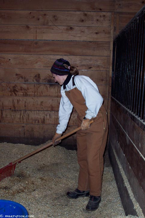 cleaning stalls