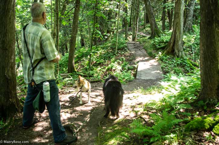 walking woody path at Jay Cooke State Park