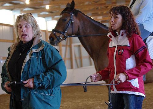 More on the Dressage Clinic