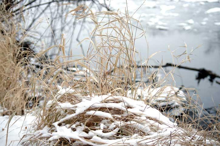 Snow Deprivation