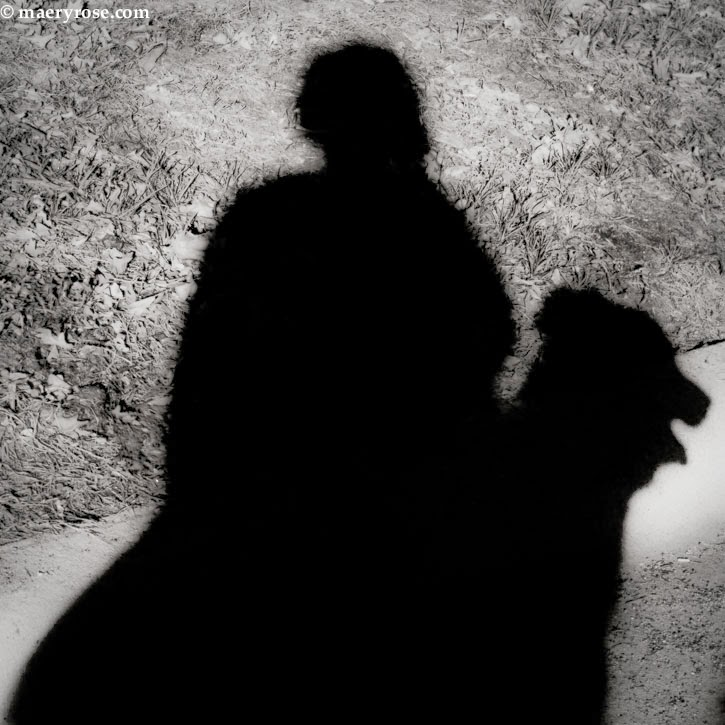 A Mere Shadow of My Former Self