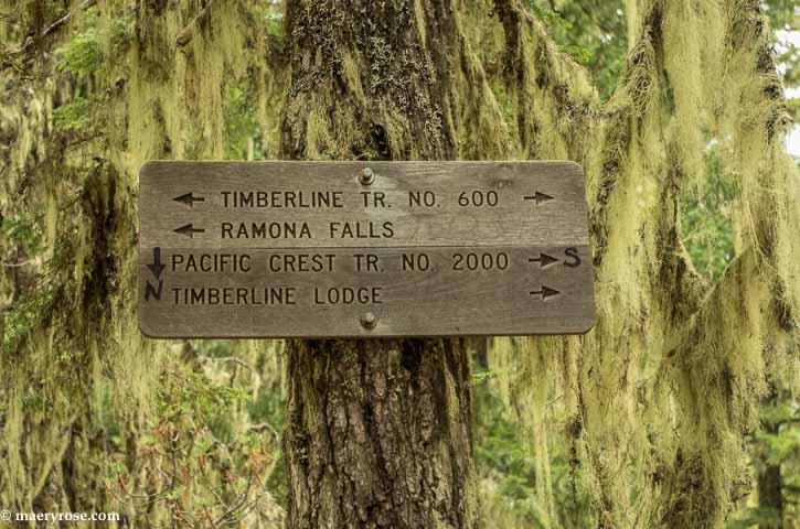 Part 3 of Oregon Trip: Hike to Ramona Falls