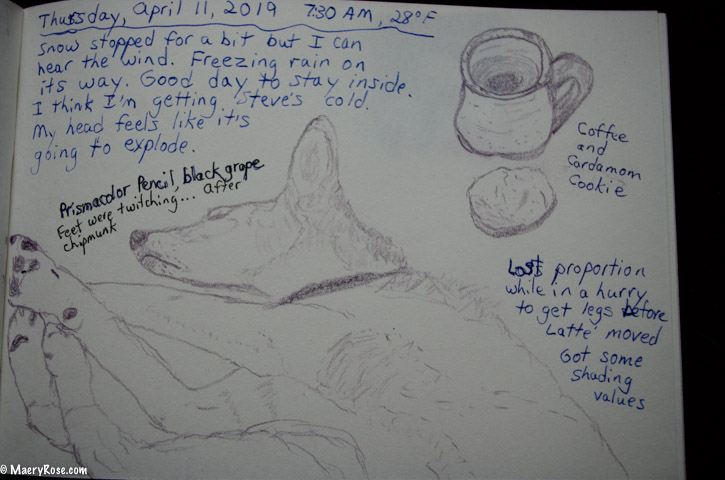 Creating a Life in Pages Through a Drawing Practice
