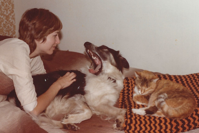 woman, dog, and cat