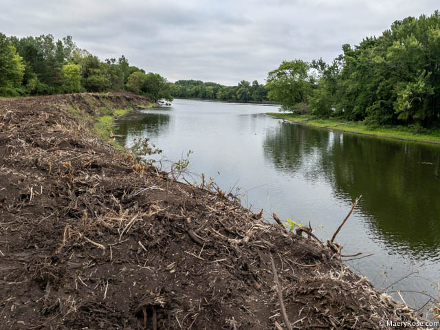 river bank cleared of vegetation